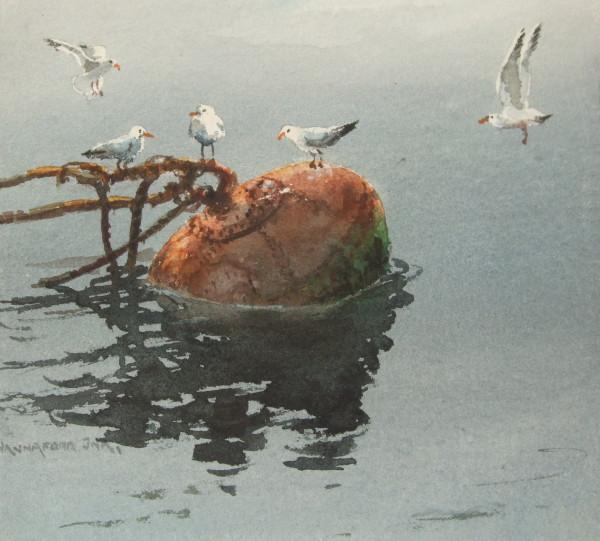 Seagulls on Bouy