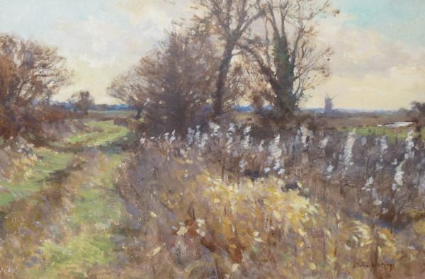 Marsh Path, Acle