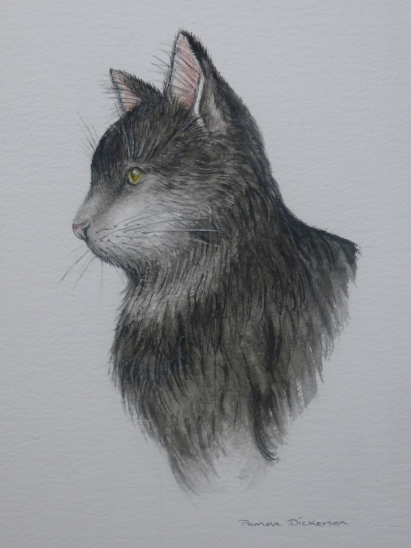 Cat Collection: Whiskers (SOLD)