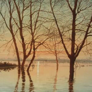 X (SOLD) Sunset Gold, Earsham (1976)