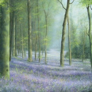 X11 (SOLD) Bluebell