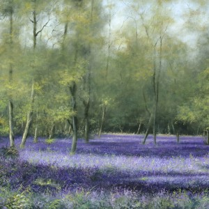 X09 (SOLD) Bluebell 4