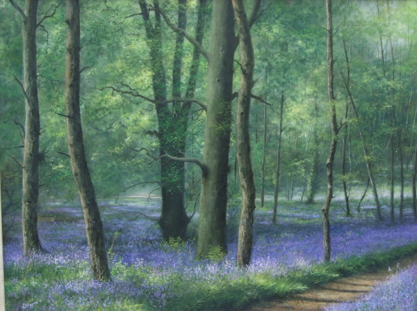 X07 (SOLD) Bluebell