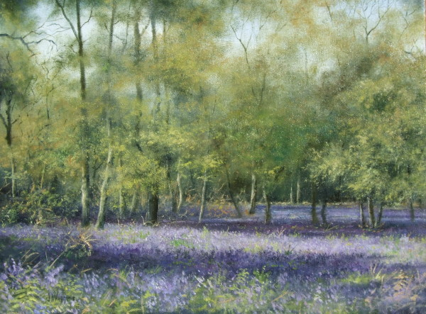 X08 (SOLD) Bluebell