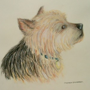Dog Commission in Pastel (Benji) Yorkshire Terrier (SOLD)
