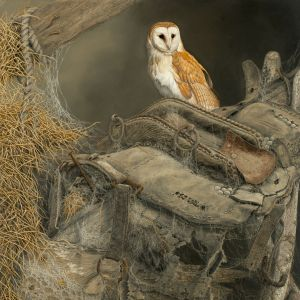 X(SOLD) The Hayloft (Barn Owl)