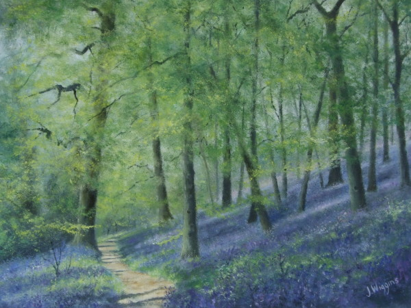 X12 (SOLD)  Bluebell