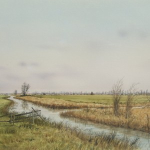 X (SOLD) Claxton Marshes