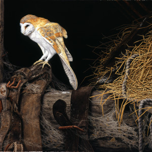"Signed Limited Print – ""Barn Owl"" (In the Hayloft)"