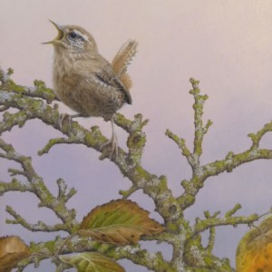 X (SOLD) Evening Song (Wren)