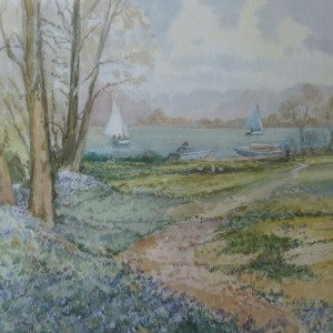 X (SOLD) Bluebell time, Salhouse Broad, Norfolk