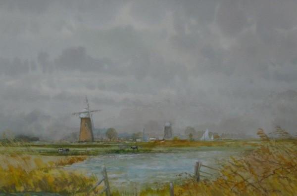 Across the Marshes, Halvergate, Norfolk