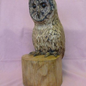 X (SOLD) Tawny Owl (Ash with Pyrography finish)