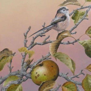 X (SOLD) In the Apple Tree (Long Tailed Tit)