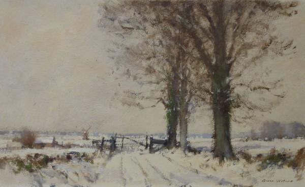 Frozen Norfolk