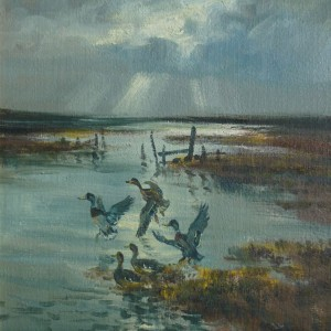 X35 (SOLD) Evening Light (Mallards Rising)