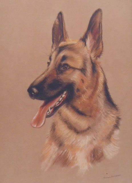 Dog Commission in Pastel (Alsation) (SOLD)