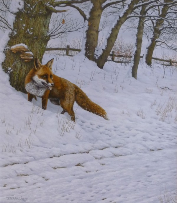 On the Run (Fox)