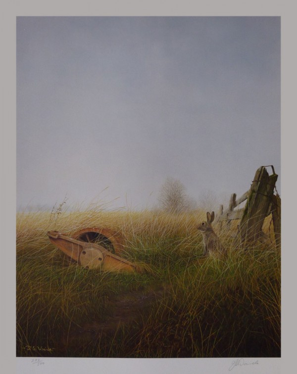 """Signed Limited Print – """"Cambridge Roller"""" (Hare)"""