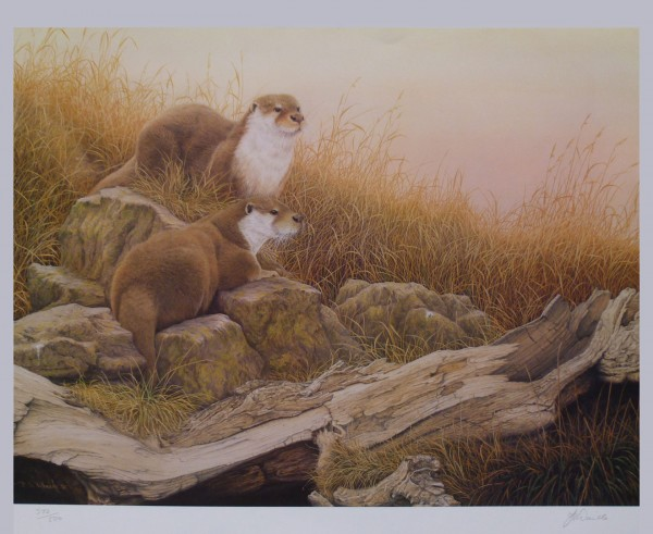 """Signed Limited Print – """"Ever Alert"""" (Otters)"""