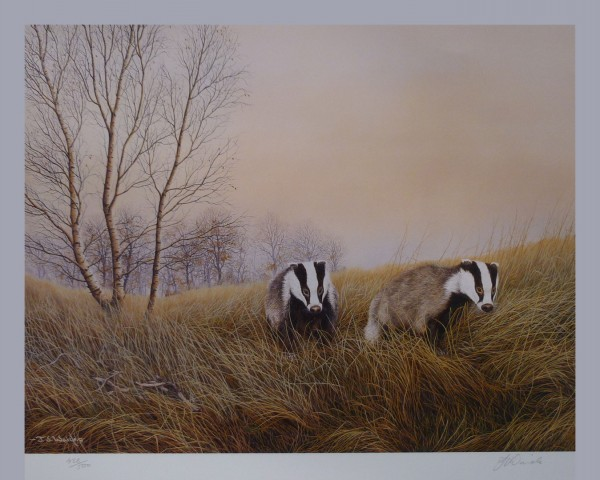 "Signed Limited Print – ""On the Move"" (Badgers)"
