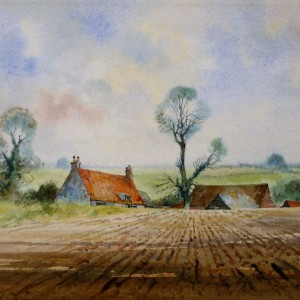 X (SOLD) Shadowed Field and Norfolk Farm near Holt