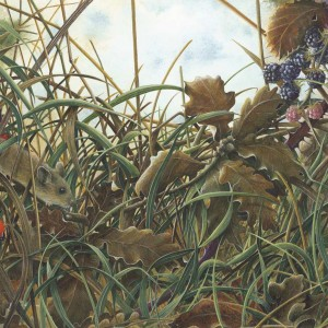 X (SOLD) The Next Meal – Wood Mouse