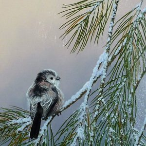 """X(SOLD) """"Fluffed Out"""" Winter Pines (long Tailed Tit)"""