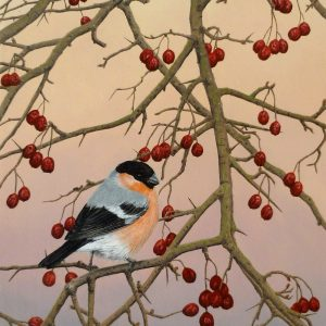 X(SOLD) Winter Feast (Bullfinch)