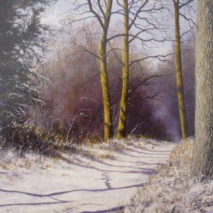 X30 (SOLD) Winter Shadows 2