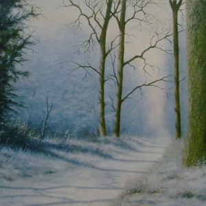 X29 (SOLD) Winter Shadows no1