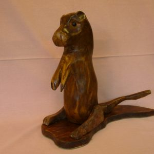 Otter on Lookout (Sycamore)