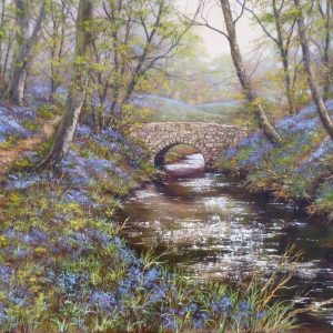 The Old Bridge – Bluebell Woods