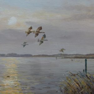 X (SOLD) Evening Flight – Broadland