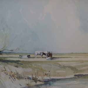 May on the Marshes 1974