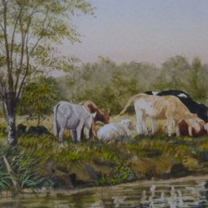 Grazing on The Bure
