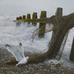 X (SOLD) Time and Tide (Herring Gull)
